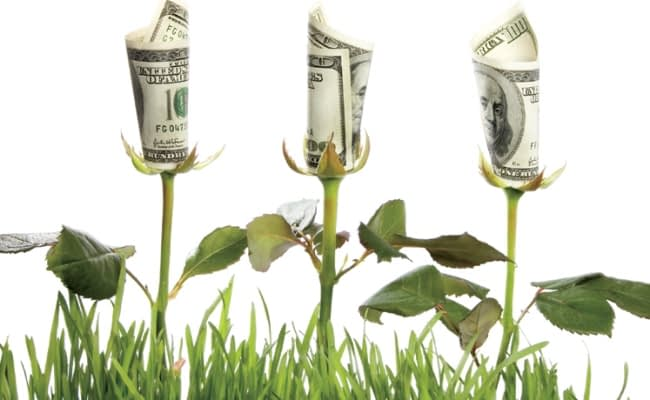how to grow your wealth