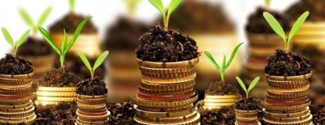 Match Your Investment Objective with the Right Investment Instruments